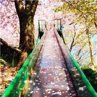 我用一生去走这座桥,而对面却没有你,原来我感动的就只有我自己。