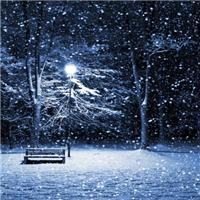 雪唯美伤感意境图片