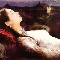 萧皇后被上的小说