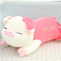 猪睡觉可爱图片:猪的图片大全大图片