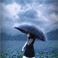 一个人雨中淋雨图片:雨中图片伤感一个人