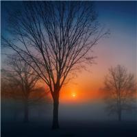 黎明唯美风景图片