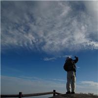 抬头望天空的男人图片