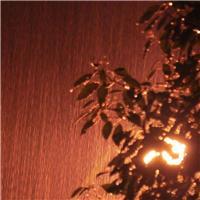 下雨的夏天的夜晚图片