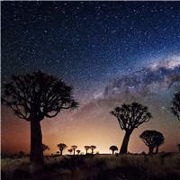 夏天的夜空图片
