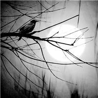黑夜图片唯美伤感