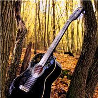 欧美吉他图片大全唯美