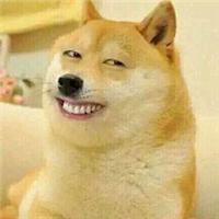 单身狗图片头像