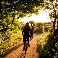 迎着阳光骑车的图片