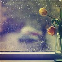 夜晚春雨图片唯美 春雨的夜晚