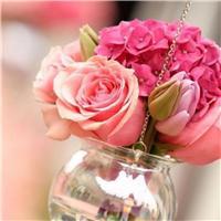 赠人玫瑰带字的图片