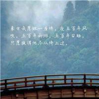 来世我愿做一座桥,受五百年风吹,五百年雨淋,五百年日晒,只愿换得他从桥上过。