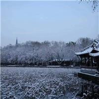 飘雪的图片实景