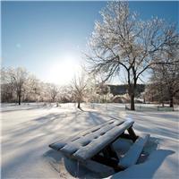 冬天飘雪的图片唯美