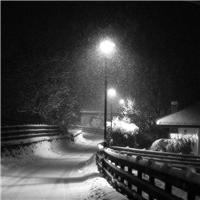 夜晚飘雪的图片