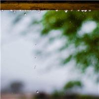 风轻轻的吹来,雨也跟着悲伤起来