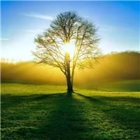人生路上难免会遇到困难,拐个弯,绕一绕何尝不是个办法.