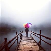 一个人的背影