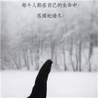 落在一个人一生中的雪/ 我们不能全部看见/ 扛鋈都在自己的生命中