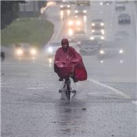 雨中孤独前行