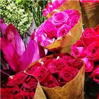 红玫瑰象征着热烈的爱,希望大家都爱情美满,幸福甜蜜