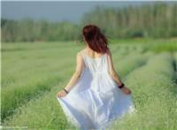 青春春天薰衣草背影,少女女人唯美浪漫薰衣草人像#女生#唯美#背影