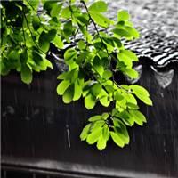 梅雨时节雨纷纷#乡村#古风#下雨