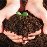 父母的情商,就是孩子心智成长的土壤#手