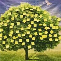希望之树#手绘