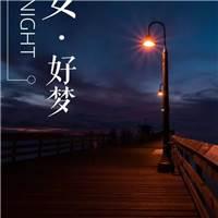 《活出人生的意义》#晚安#路灯