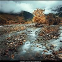 在这么美的秋里,清唱人生的悲欢离合,笑看人生的聚散两依依.#风景#秋天
