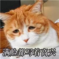 烦躁,无助,抵触,厌恶.#猫咪