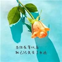 痛到心滴血#花朵#唯美